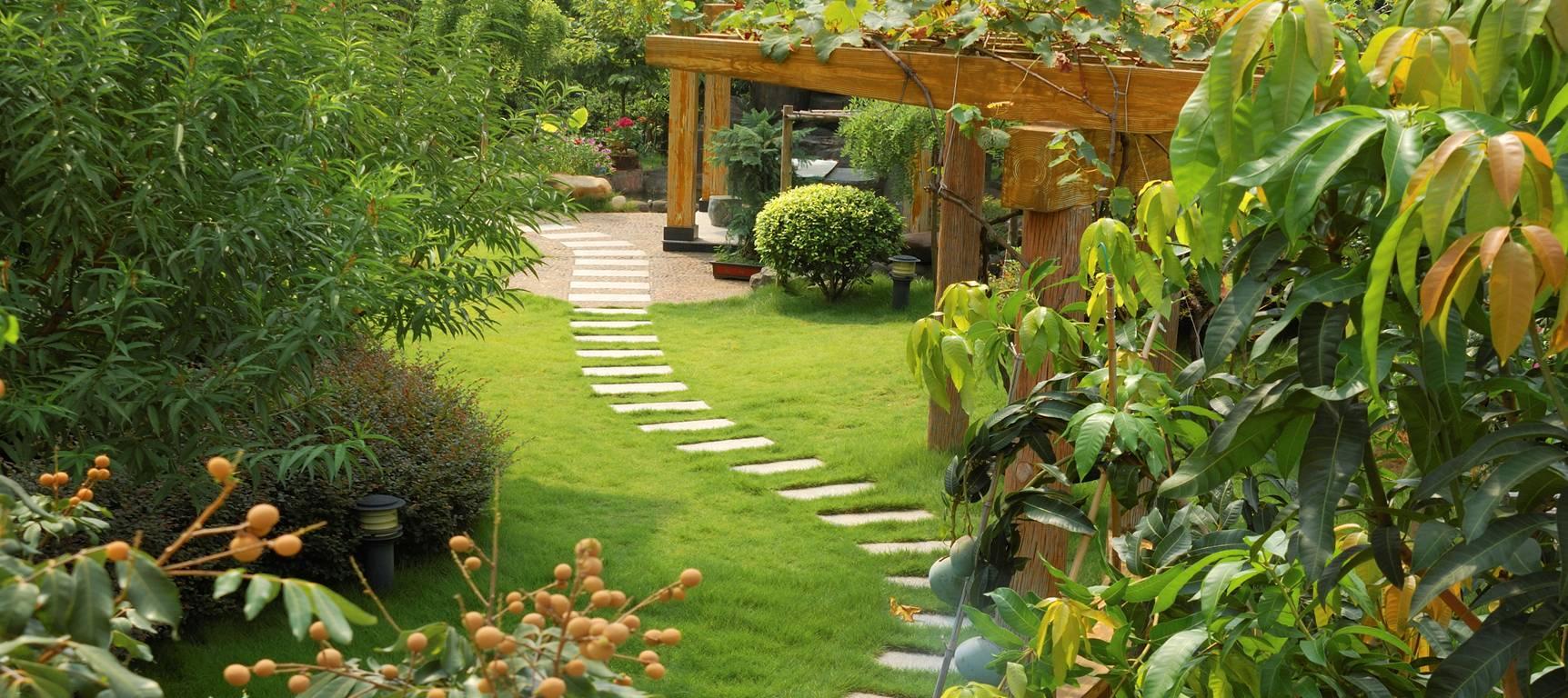 Jard n ibi construcci n for Jardin loto ibi